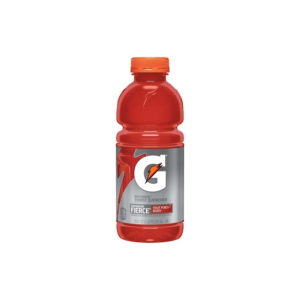 Gatorade - 20 oz Fruit Punch Bottle 24pk Case