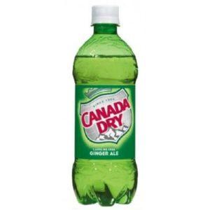 Canada Dry - Ginger Ale 20oz Bottle Case