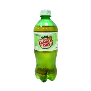Canada Dry - Diet Ginger Ale 20oz Bottle Case