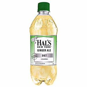 Hal's - New York Diet Ginger Ale 20oz Bottle Case