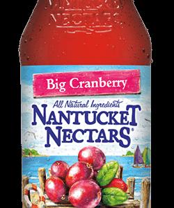 Nantucket Nectars - Cranberry Cocktail 16oz Bottle Case