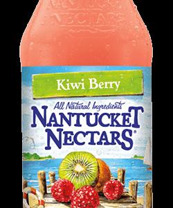 Nantucket Nectars - Kiwi Berry 16oz Bottle Case