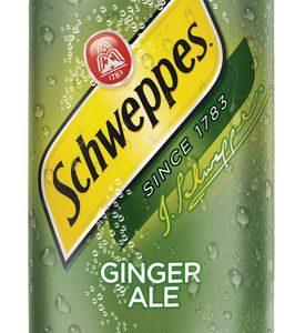 Schweppes - Ginger Ale 12oz Can Case